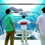 三ツ矢サイダーCMのロケ地の水族館はどこ?CG?スタジオ撮影?